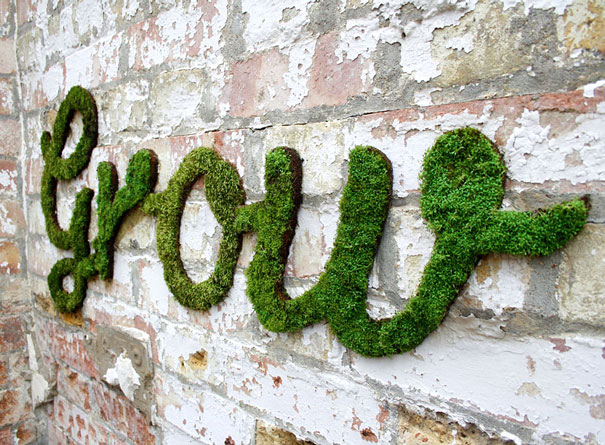DIY Saturday #20- Moss Graffiti